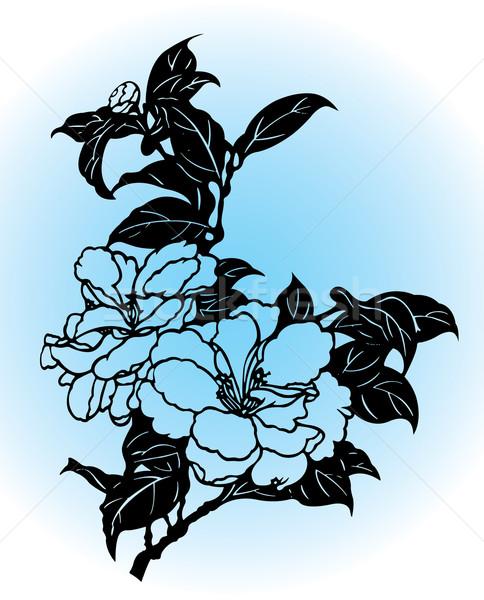 Çin çiçekler örnek çiçek bahar Stok fotoğraf © UltraPop
