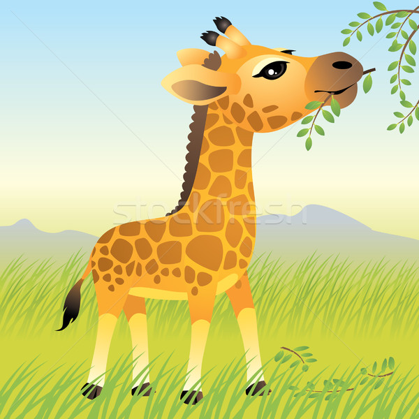 Giraffe Stock photo © UltraPop
