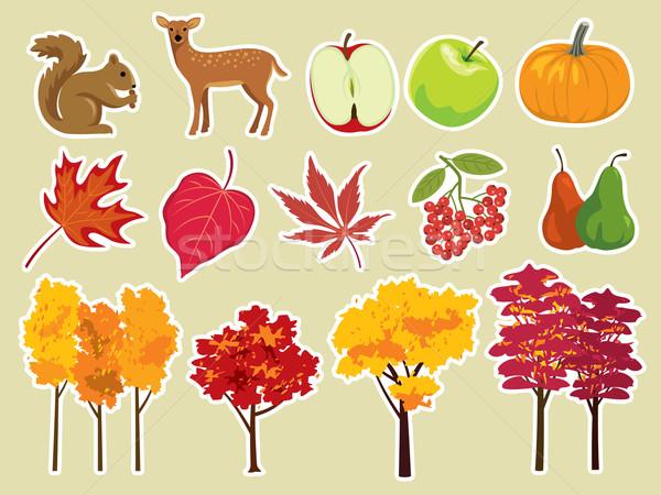 Sonbahar vektör ayarlamak dizayn elemanları ağaç Stok fotoğraf © UltraPop