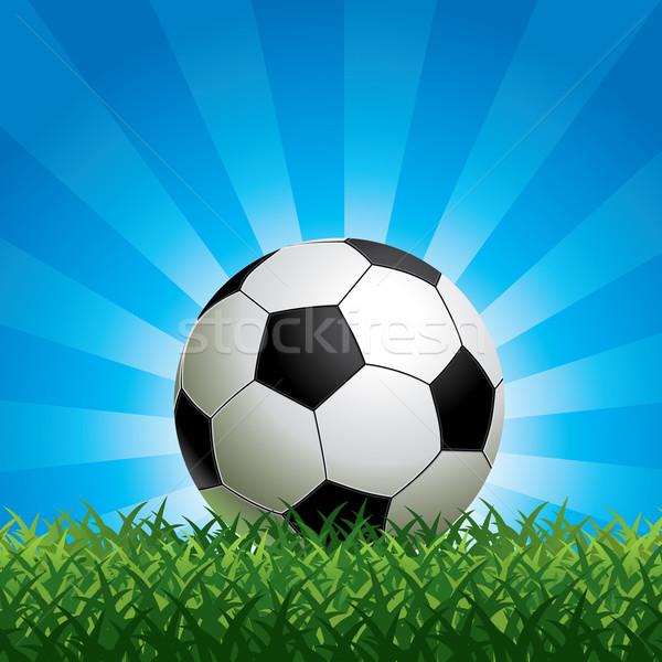 Soccer Ball Stock photo © UltraPop