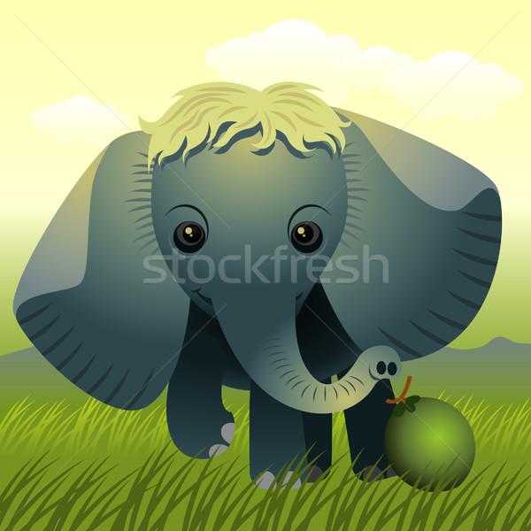 Fil örnek daha fazla hayvanlar benim portföy Stok fotoğraf © UltraPop