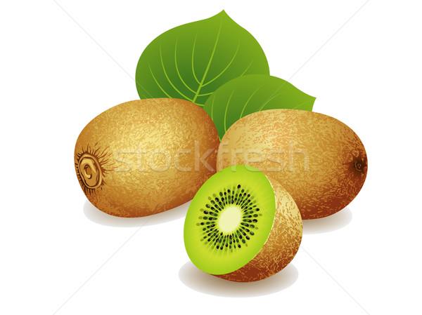 Kiwi vruchten realistisch bos vruchten natuur Stockfoto © UltraPop