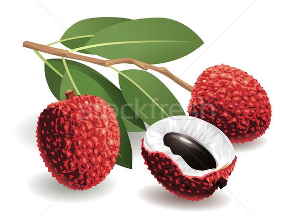 фрукты реалистичный природы лист Сток-фото © UltraPop