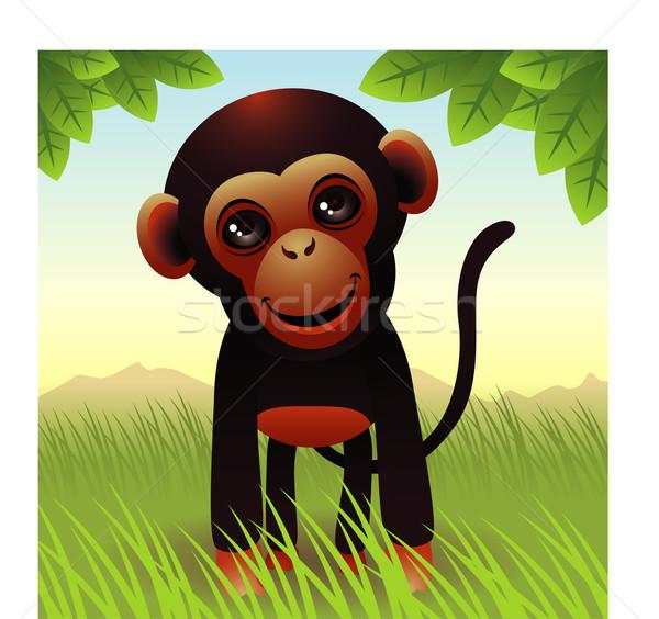 Maymun örnek daha fazla hayvanlar benim portföy Stok fotoğraf © UltraPop