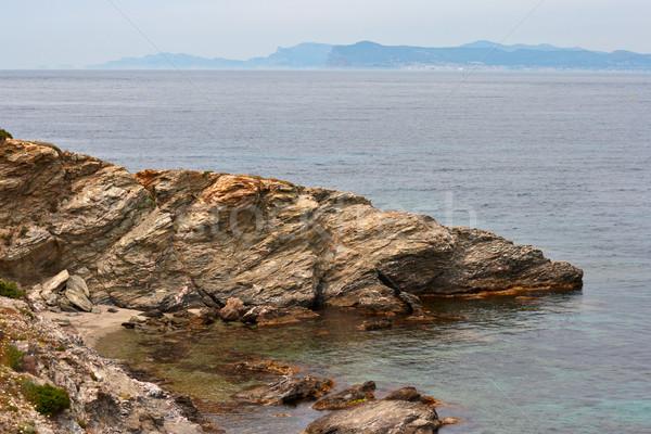 Isola mare natura spiaggia fiore sole Foto d'archivio © ultrapro