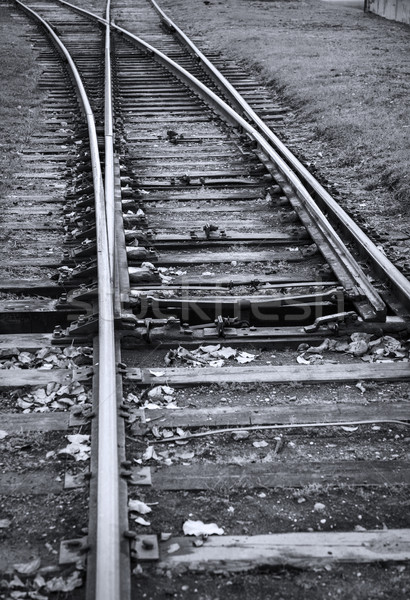 Line of railway crossing black and white image Stock photo © ultrapro