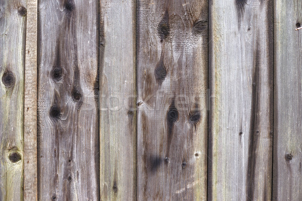 Velho cinza parede textura Foto stock © ultrapro