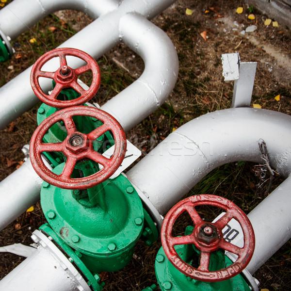 Óleo alto tubo linha velho verde Foto stock © ultrapro