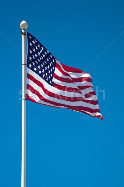 American flag on the mast Stock photo © ultrapro