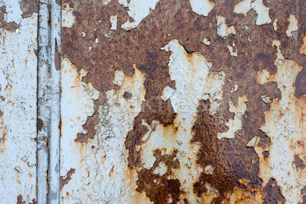 rusty old steel sheet Stock photo © ultrapro