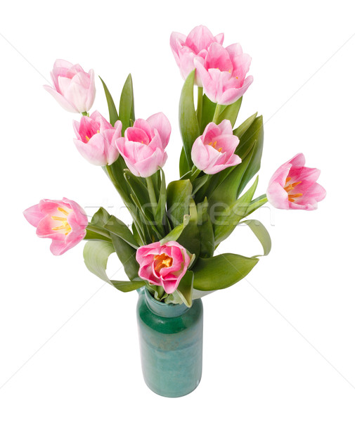 pink tulips in gree vase isolated on white background Stock photo © ultrapro