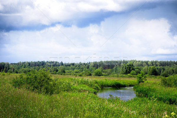 The river flows through the meadows in Belarus Stock photo © ultrapro