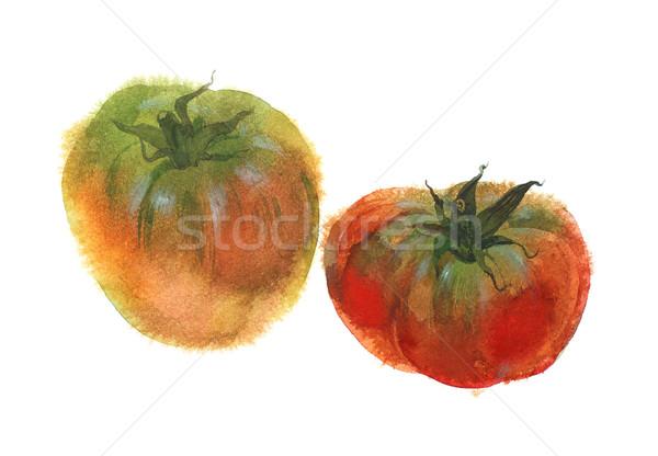 Aquarela imagem dois maduro tomates isolado Foto stock © ultrapro