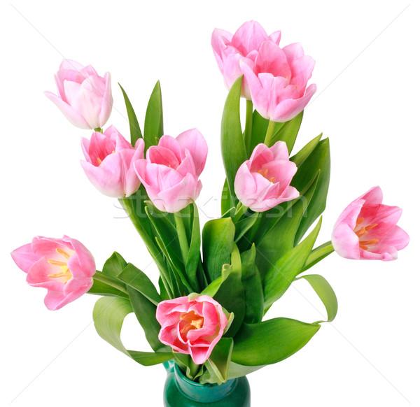 Buquê tulipas isolado branco páscoa primavera Foto stock © ultrapro