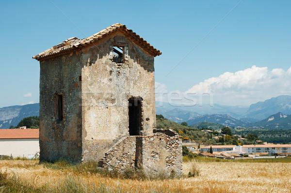 Oude huis bloem huis natuur achtergrond Stockfoto © ultrapro