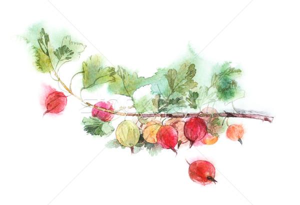 Rosso acquerello immagine isolato bianco texture Foto d'archivio © ultrapro