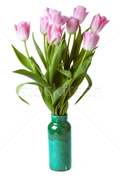 pink tulips in gree vase isolated on a white background Stock photo © ultrapro