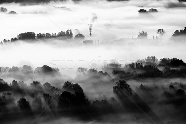 завода тумана черно белые изображение Сток-фото © umbertoleporini