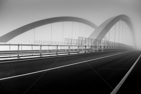 дороги моста тумана черно белые изображение Сток-фото © umbertoleporini