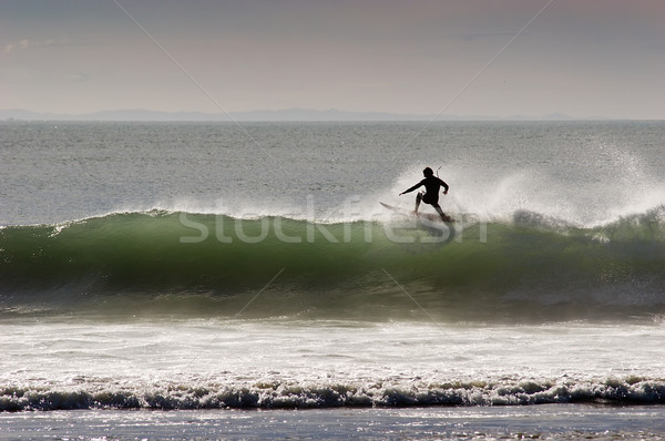 surfing_09 Stock photo © Undy