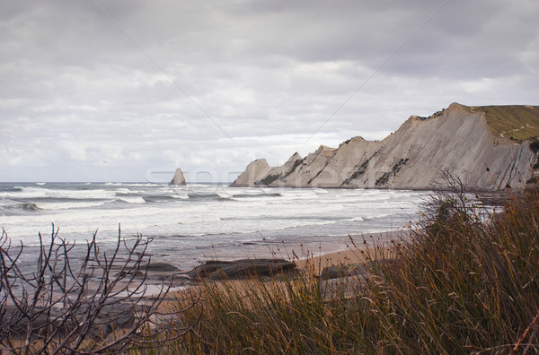 Cape Kidnappers Stock photo © Undy