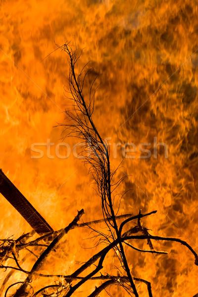 Vreugdevuur warmte passie brand energie Stockfoto © Undy