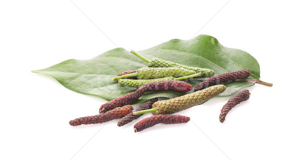Long pepper or Piper longum isolated on white background Stock photo © ungpaoman