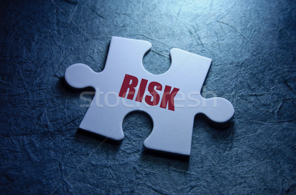 Risk management Stock photo © unikpix