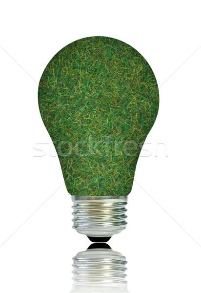 Stockfoto: Groene · gloeilamp · gras · witte · lamp · elektriciteit