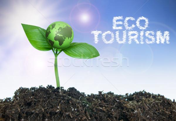 ökoturizmus szófelhő kicsi zöld világ növekvő Stock fotó © unikpix