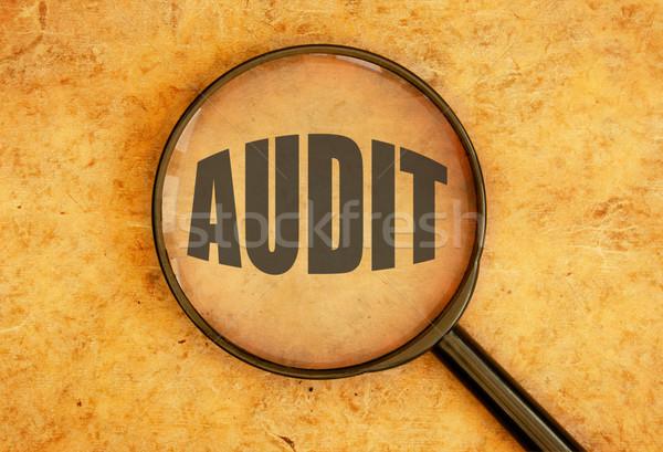 Audytu lupą koncentruje słowo informacji finansowych Zdjęcia stock © unikpix
