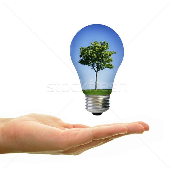 Stockfoto: Groene · energie · boom · landschap · gras · blauwe · hemel · binnenkant
