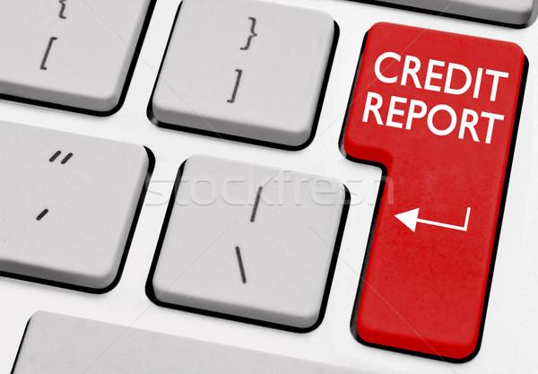 Credit report  Stock photo © unikpix