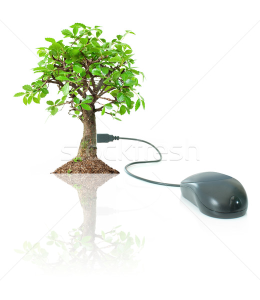 Eco friendly technology Stock photo © unikpix