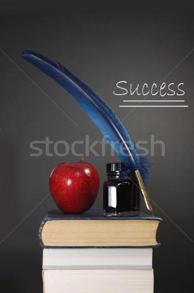 Education success Stock photo © unikpix