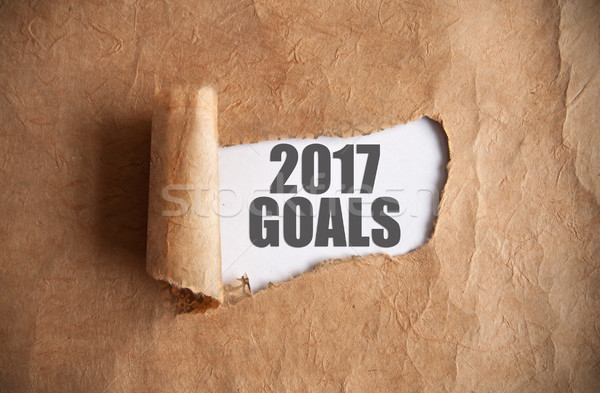 2017 goals uncovered  Stock photo © unikpix