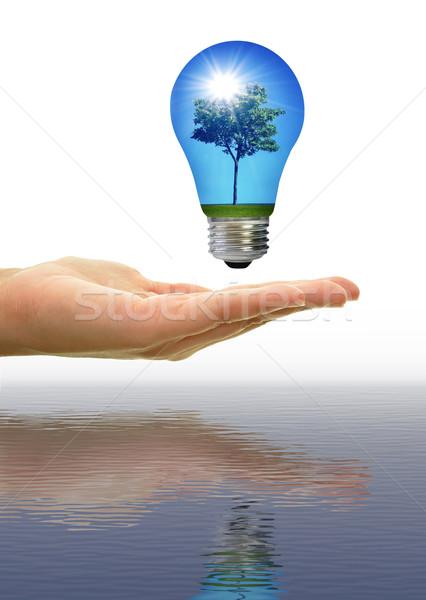 Zonne-energie boom landschap zon stralen Blauw Stockfoto © unikpix