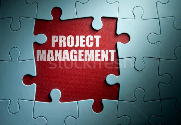 Foto stock: Proyecto · gestión · que · falta · piezas · rompecabezas
