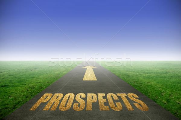 Golden prospects concept Stock photo © unikpix