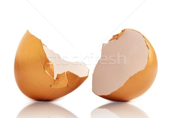 Golden egg Stock photo © unikpix