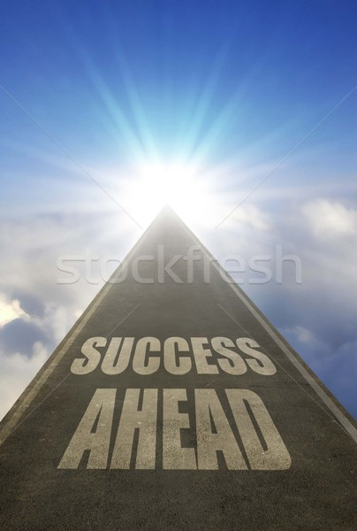 Road to success Stock photo © unikpix