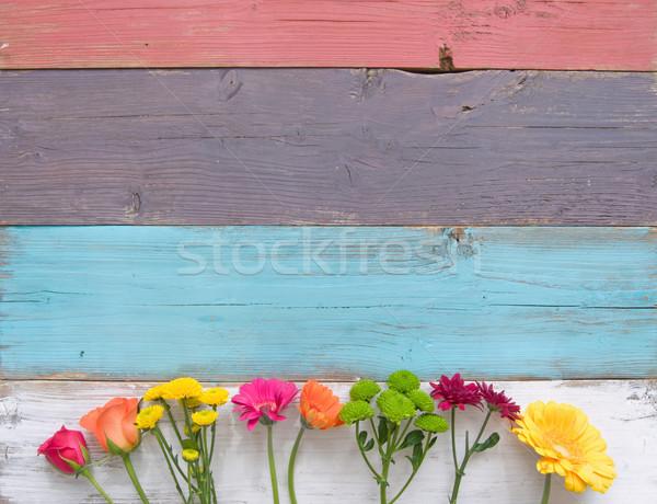 Bahar çiçekleri çiçek sınır ahşap Paskalya bahar Stok fotoğraf © unikpix