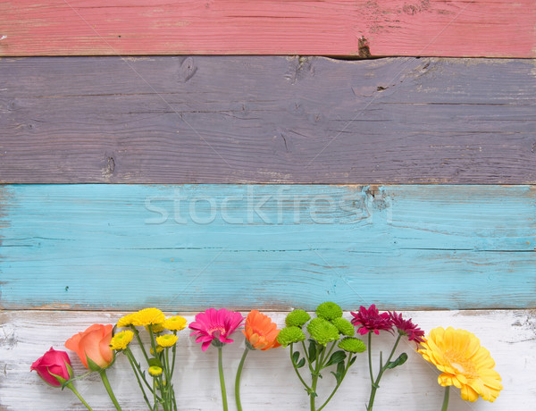 весенний цветок цветок границе Пасху весны Сток-фото © unikpix