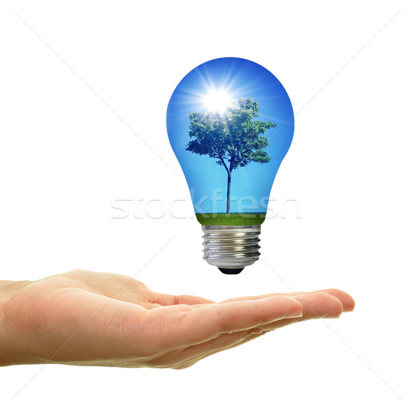 Energia solare albero panorama sole raggi blu Foto d'archivio © unikpix