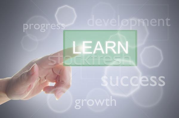 Learn button Stock photo © unikpix