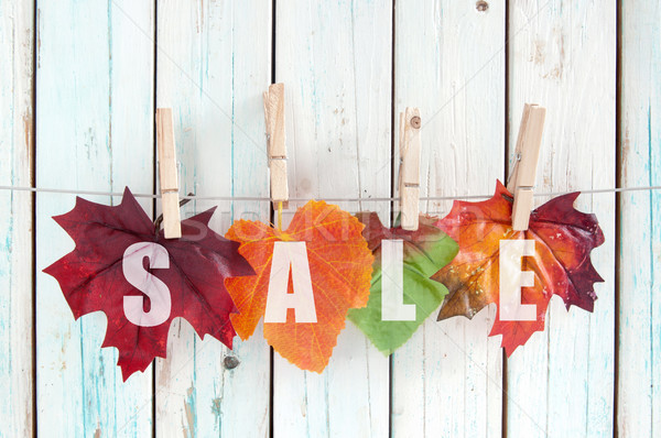 Autumn sale  Stock photo © unikpix