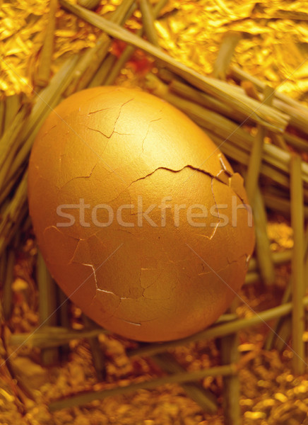 Gold nest egg Stock photo © unikpix