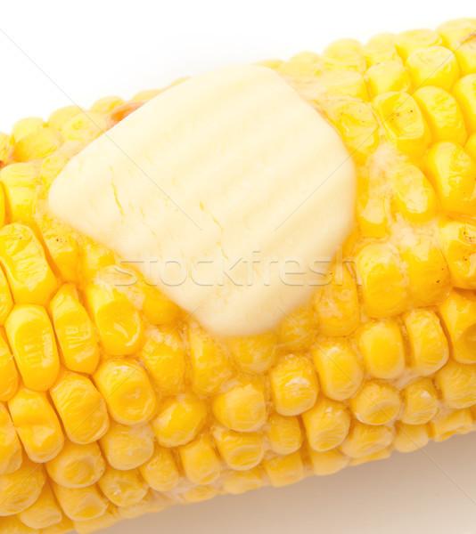 Corn on the cob Stock photo © unikpix