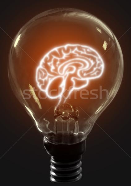 Light bulb brain Stock photo © unikpix