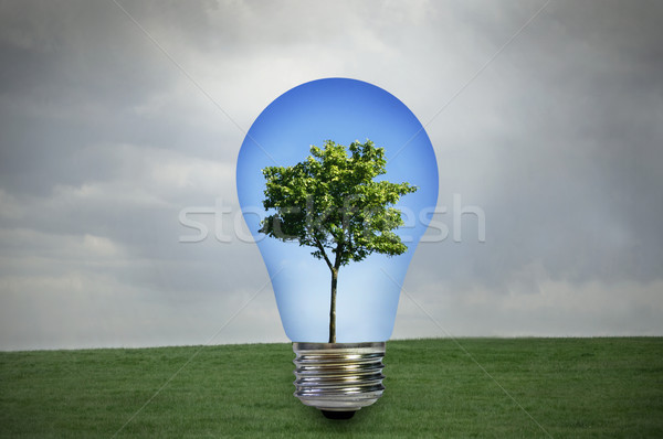 Environmentally friendly energy Stock photo © unikpix
